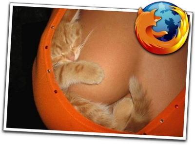 sexy_firefox_logo.jpg