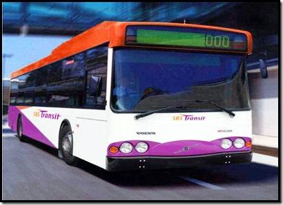 singapore_bus