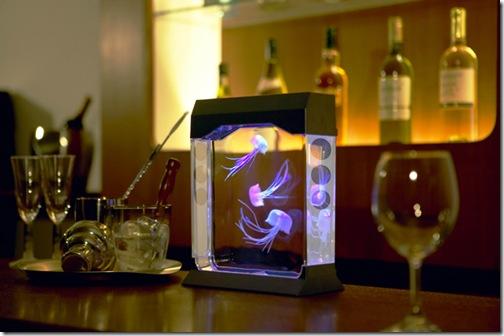 aquapict-jellyfish-tank-led