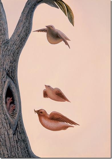 ocampo_family_of_birds