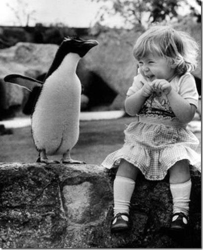 pingvinas ir mergaitė