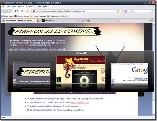Firefox 3.1