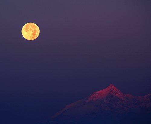 hunters-moon_stefano-de-rosa