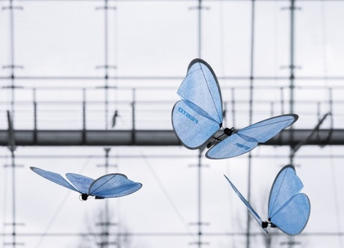 festo-bionicants-flexshapegripper-emotionbutterflies-9