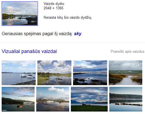 """2016-04-14 20_03_24-""""Google"""" paieška"""