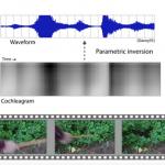Dirbtinis intelektas geba pagal vaizdo įrašą sukurti tinkamą garso efektą