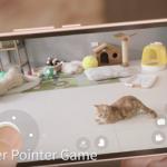 Web kamera skirta bendrauti su katukais ir kitais naminiais gyvūnams