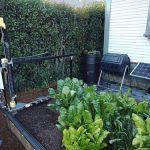FarmBot Genesis – CNC staklių principu veikianti automatizuota daržovių mini ferma